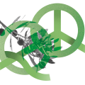 Peace education report launched